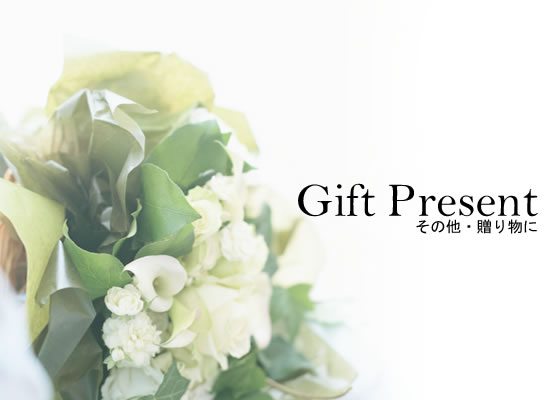 Gift & Present - ギフト&プレゼント -