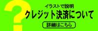 海外への発送について/日本から海外への発送可能(EMS便 日本郵便)